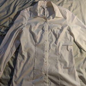 Prologue medium button down blouse NWT